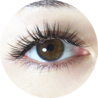216230104b7 Milly's Singapore | Signature Single Strand & Cluster Eyelash Extensions